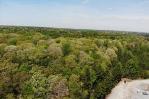 Chester Virginia Land For Sale - Near 288 & Jefferson Davis Hwy in Chesterfield, VA (7 of 16)