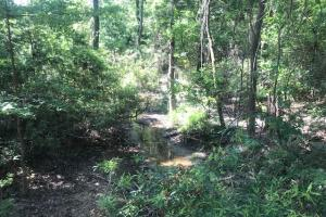 Oak Spring Ranch 63.7 ac, Rolling, Timber, Wildlife