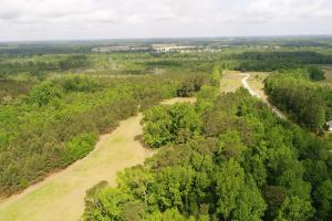NC Hwy 210 Homestead or Development Opportunity  in Johnston, NC (24 of 30)