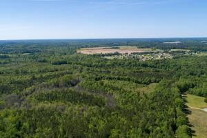 NC Hwy 210 Homestead or Development Opportunity  in Johnston, NC (23 of 30)