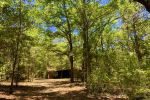 Wolfden Lake Lodge and Timber Investment  in Mobile, AL (20 of 34)