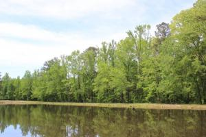 Daggerhorn Farm - Fishing, Hunting and Recreation! in Montgomery, AL (12 of 25)
