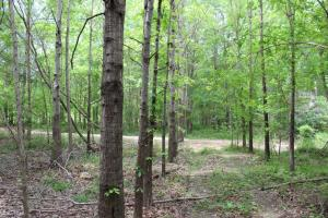 Daggerhorn Farm - Fishing, Hunting and Recreation! in Montgomery, AL (18 of 25)