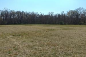 775+/- Acre Ranch at Bottom of Petit Jean Mountain in Conway, AR (6 of 25)