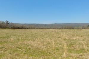 775+/- Acre Ranch at Bottom of Petit Jean Mountain - Conway County AR