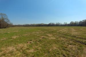 775+/- Acre Ranch at Bottom of Petit Jean Mountain in Conway, AR (7 of 25)