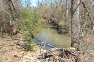 775+/- Acre Ranch at Bottom of Petit Jean Mountain in Conway, AR (15 of 25)