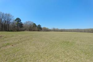 775+/- Acre Ranch at Bottom of Petit Jean Mountain in Conway, AR (12 of 25)