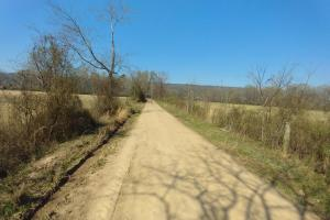 775+/- Acre Ranch at Bottom of Petit Jean Mountain in Conway, AR (9 of 25)