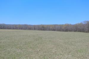 775+/- Acre Ranch at Bottom of Petit Jean Mountain in Conway, AR (3 of 25)