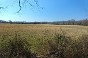 775+/- Acre Ranch at Bottom of Petit Jean Mountain in Conway, AR (10 of 25)