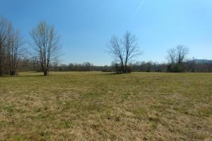 775+/- Acre Ranch at Bottom of Petit Jean Mountain in Conway, AR (4 of 25)