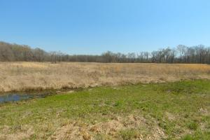 775+/- Acre Ranch at Bottom of Petit Jean Mountain in Conway, AR (13 of 25)