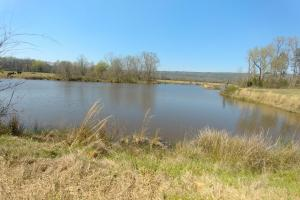 775+/- Acre Ranch at Bottom of Petit Jean Mountain in Conway, AR (21 of 25)
