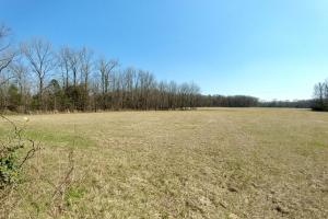 775+/- Acre Ranch at Bottom of Petit Jean Mountain in Conway, AR (8 of 25)