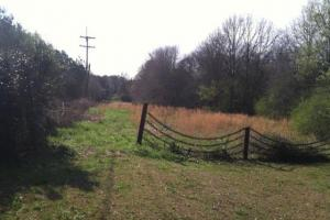 4 Acre Commercial Tract in Florence, MS - View to West (8 of 8)