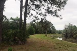 Secluded Private Creek Recreational Large Homesite in Charlotte, FL (4 of 9)