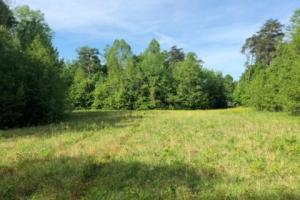 83 Acres with finishable Hunting Retreat in Madison, KY (9 of 33)
