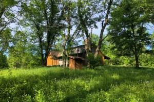 83 Acres with finishable Hunting Retreat in Madison, KY (4 of 33)