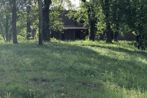 83 Acres with finishable Hunting Retreat in Madison, KY (25 of 33)