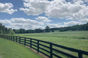 Odenville Custom Estate & Horse Farm in Saint Clair County, AL (47 of 72)
