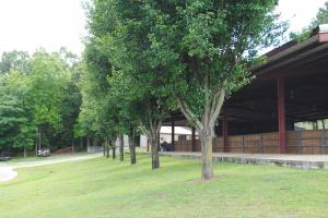 Odenville Custom Estate & Horse Farm in Saint Clair County, AL (62 of 72)