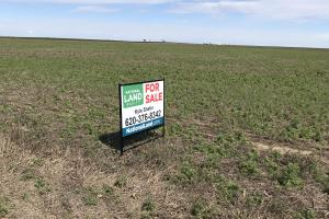 Dry Land Farm Ground For Sale in Finney, Kansas - Finney County KS