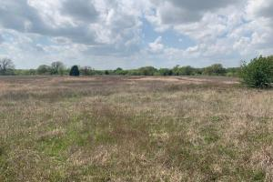 16.5 ac South of Mabank, Scattered Timber with Secluded Pond, Scenic Meadow in Henderson County  - Henderson County TX