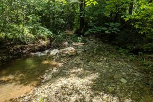 Peppers Creek Property with Views in McDowell, NC (5 of 21)