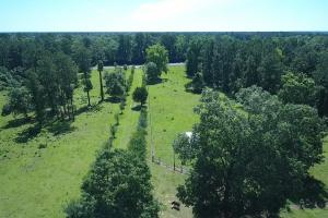 Sportsman's Paradise/ Recreational tract and Homesite in Liberty, TX (29 of 29)