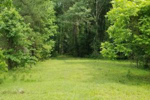 Sportsman's Paradise/ Recreational tract and Homesite in Liberty, TX (22 of 29)