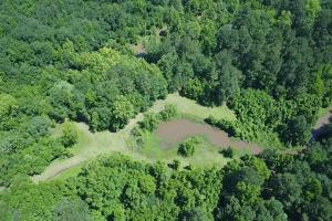 Sportsman's Paradise/ Recreational tract and Homesite in Liberty, TX (8 of 29)