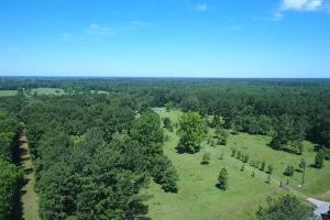 Sportsman's Paradise/ Recreational tract and Homesite in Liberty, TX (21 of 29)