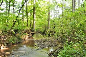Camp Creek Mini Farm and Homesite - Bibb County AL