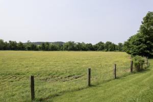513 acre Cattle Farm on the Green River in Casey, KY (18 of 24)