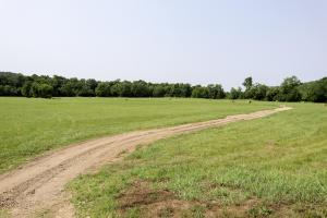 513 acre Cattle Farm on the Green River in Casey, KY (2 of 24)