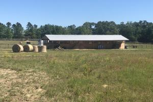 Equestrian and Hunting Property - Aiken County SC