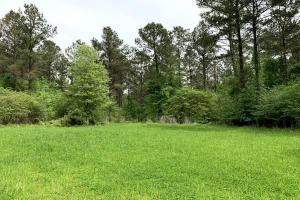 Loring Road Timber and Hunting Investment  in Madison, MS (6 of 29)