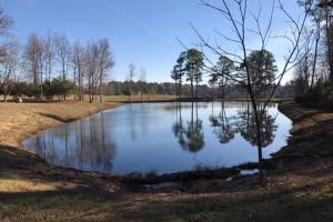 Blount County Home & Pond  in Blount County, AL (3 of 13)