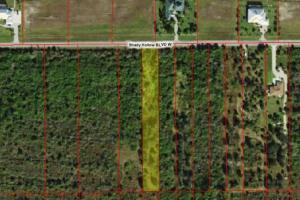 This wonderful Golden Gate Estates lot! - Collier County FL