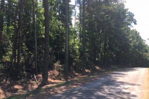 Airport Road Hunting & Timber Tract - Blount County AL
