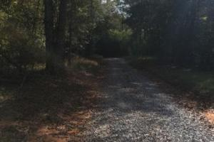 Glennwood Recreation and Hunting Tract in Crenshaw, AL (8 of 11)