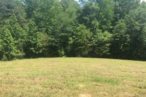 Corner-Robbins Home Sites & Timber Tract in Jefferson, AL (14 of 16)