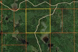 Land for Sale in Minnesota