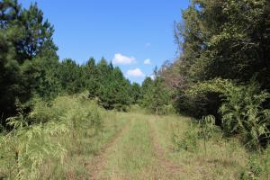 Wheless Drive Retreat - McDuffie County GA