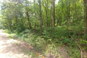 18.04+/- Acres Residential and Hunting Land on Piney Bay - Johnson County AR