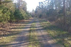 9.29+/- Acres Residential Land Overlooking Piney Bay in Johnson, AR (11 of 12)