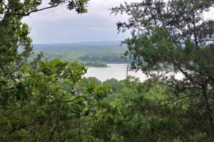 9.29+/- Acres Residential Land Overlooking Piney Bay in Johnson, AR (8 of 12)