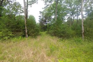 10.16+/- Acres Residential Land and Waterfront Property in Johnson, AR (10 of 20)