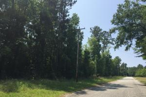White Oak Investment Tract A - Clarendon County SC